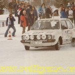 Jean-Luc Therier - Michel Vial, VW Golf GTi, retiredf